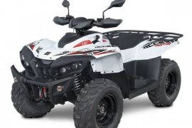 ACCESS ATV Max 650i LT - 3